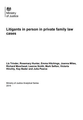 litigants in person in private family law cases