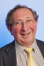 Professor David Feldman's picture